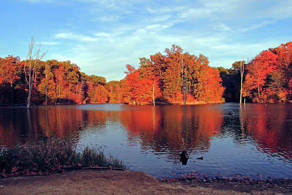 Photograph - Alum Creek Landscape by Angela Murdock