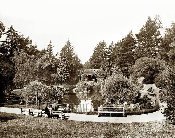 Photograph - Alvord Lake Bridge Golden Gate Park Circa 1901 by California Views Archives Mr Pat Hathaway Archives