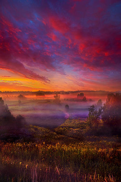 Photograph - Always Was by Phil Koch