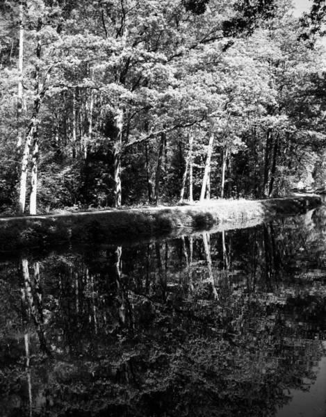 Photograph - Am Alten Kanal by Juergen Weiss