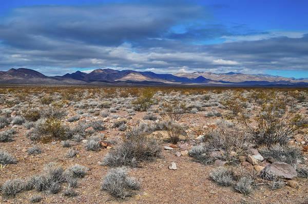 Photograph - Amargosa Desert by Kyle Hanson
