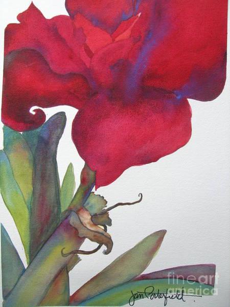 Red Amaryllis Painting - Amaryllis 2 by Jeff Friedman