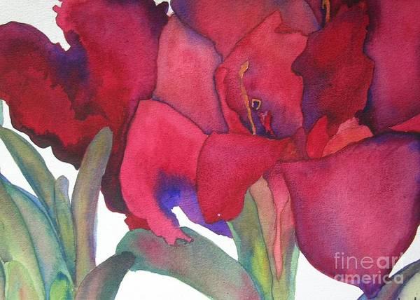 Red Amaryllis Painting - Amaryllis 3 by Jeff Friedman