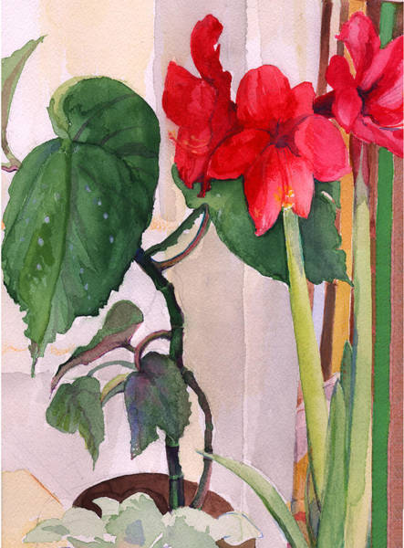 Painting - Amaryllis And Begonia by Nancy Watson