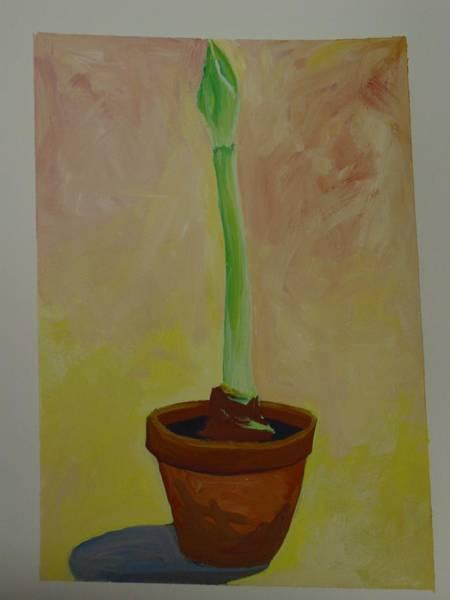 Amaryllis Painting - Amaryllis Bud by Marianne Neill