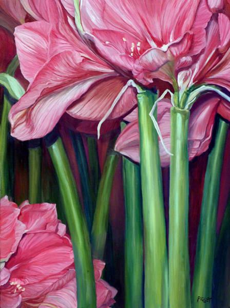 Amaryllis Painting - Amaryllis In Bloom by Rita-Anne Piquet