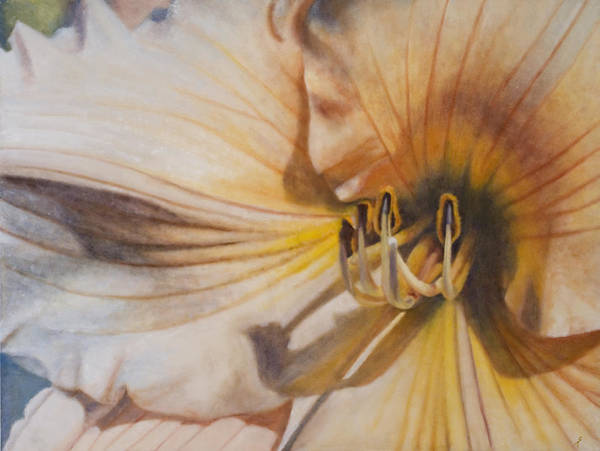 Amaryllis Painting - Amaryllis by Suzy Taylor