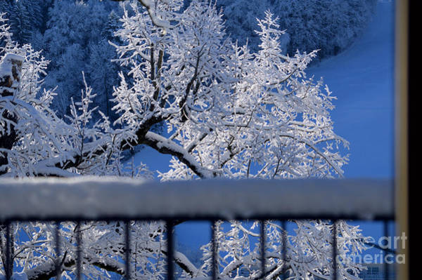 Photograph - Amazing - Winterwonderland In Switzerland by Susanne Van Hulst