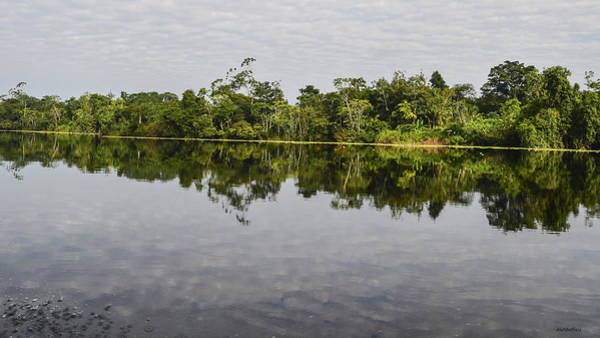 Photograph - Amazon Riverscape by Allen Sheffield