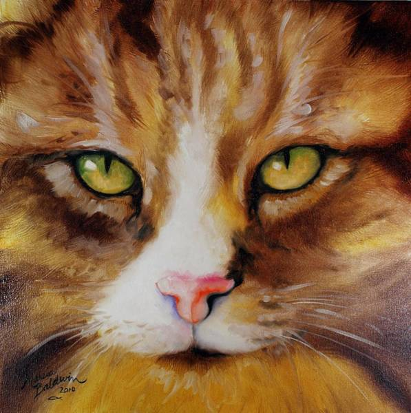 Painting - Amber Eyes Sweet Kitty by Marcia Baldwin
