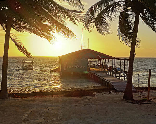 Ambergris Caye Photograph - Ambergris Cayr Sunrise Palm Trees San Pedro Belize by Toby McGuire