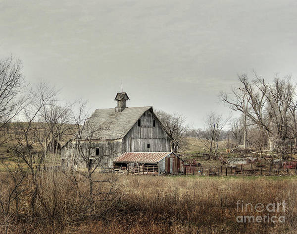 Iowa Photograph - America by Thomas Danilovich