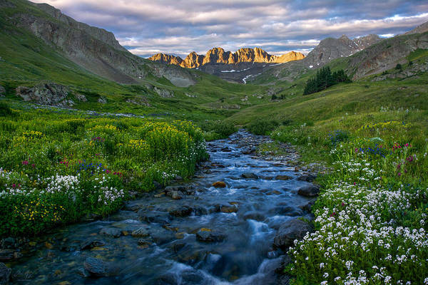 Photograph - American Basin Stream by Aaron Spong