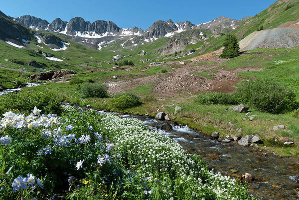Photograph - American Basin Summer Splendor by Cascade Colors
