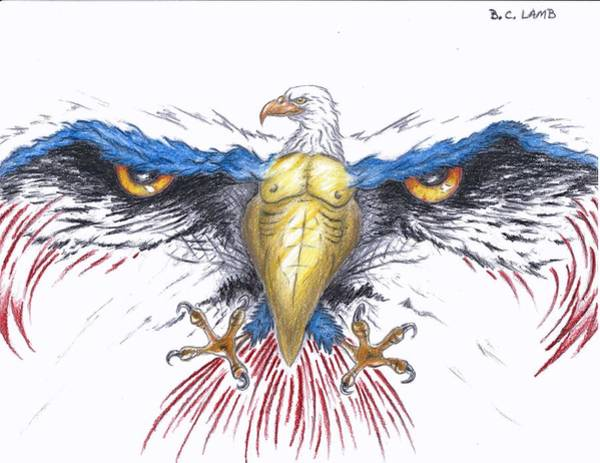 Bald Eagles Drawing - American Eagle by Bryant Lamb