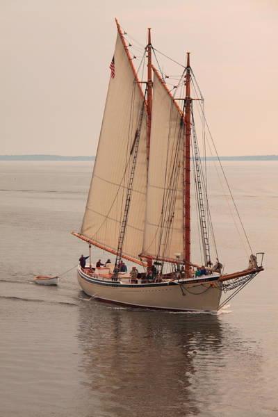 Photograph - American Eagle Sail by Doug Mills
