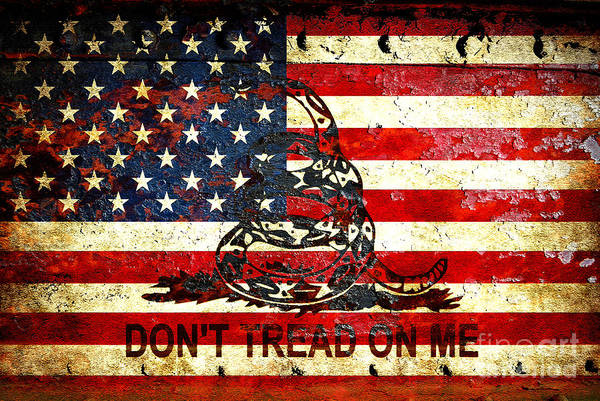Digital Art - American Flag And Viper On Rusted Metal Door - Don't Tread On Me by M L C