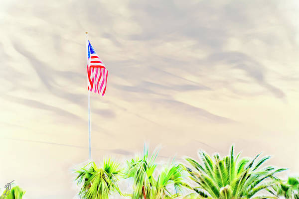 Photograph - American Flag by Gina O'Brien