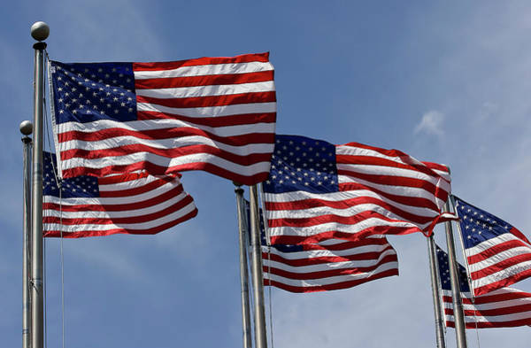 Photograph - American Flags by Jill Lang