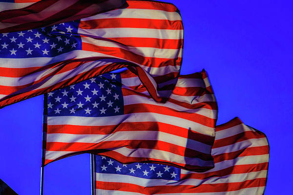 Gay Pride Flag Photograph - American Flags Waving by Garry Gay