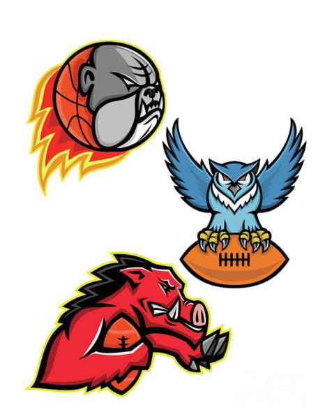 Wall Art - Digital Art - American Football And Basketball Wildlife Sports Mascot Collection by Aloysius Patrimonio