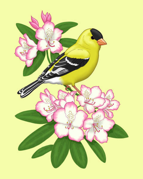 Goldfinch Wall Art - Painting - American Goldfinch And Coast Rhododendron by Crista Forest