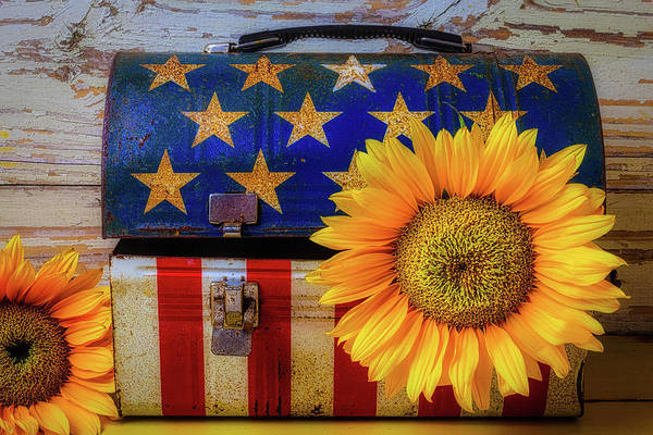 Gay Flag Photograph - American Lunchbox With Sunflower by Garry Gay