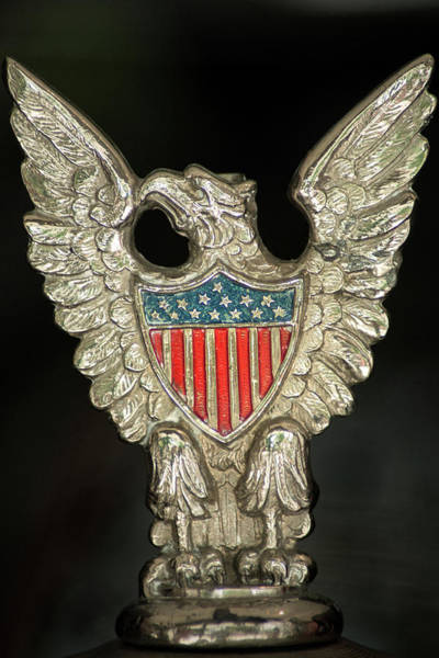 Photograph - American Metal Eagle by Don Johnson