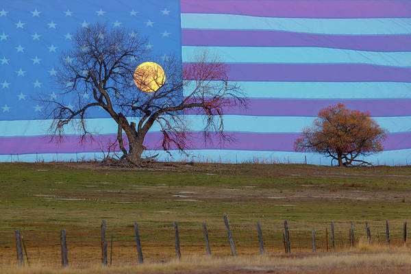 Photograph - American November Supermoon by James BO Insogna