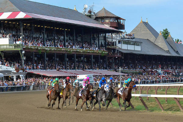 Triples Photograph - American Pharoah At Saratoga Race Course by William Stephen