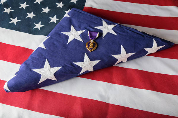 Photograph - American Purple Heart Hero by James BO Insogna