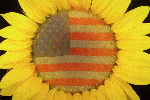 Photograph - American Sunshine by James BO Insogna