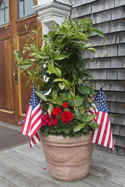 Photograph - Flowers And Usa Flag - Americana Series 03 by Carlos Diaz
