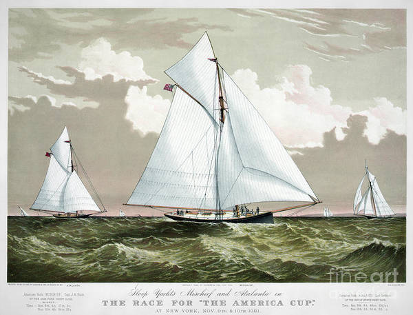 Americas Cup Photograph - Americas Cup, 1881 by Granger