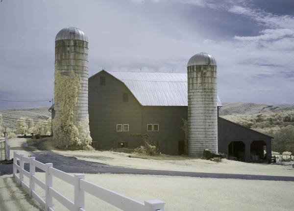 Photograph - Americas Past by Jim Cook