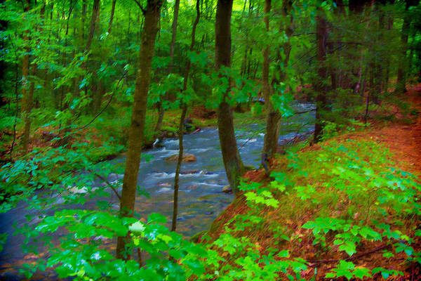 Photograph - Amethyst Brook 3 In Amherst Ma by Richard Goldman