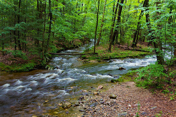 Photograph - Amethyst Brook In Amherst Ma by Richard Goldman