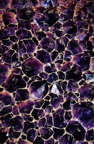 Wall Art - Photograph - Amethyst Quartz Crystal Smithsonian by Kyle Hanson
