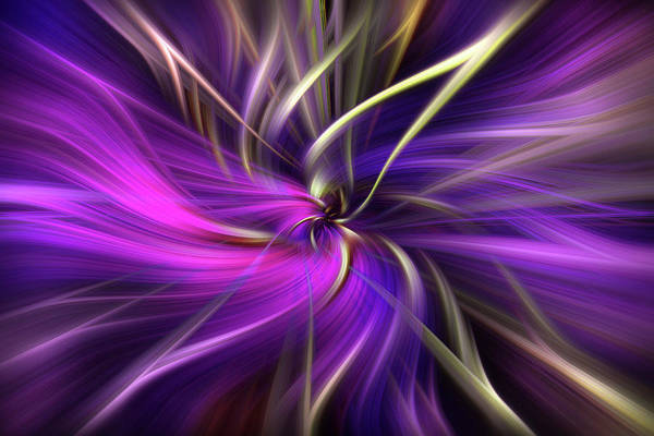 Photograph - Amethyst Star. Mystery Of Colors  by Jenny Rainbow