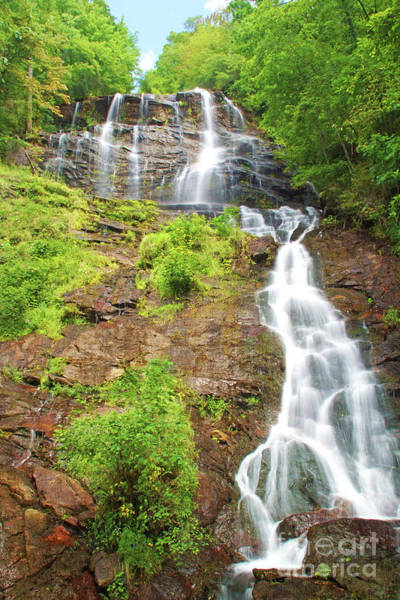 Famous Waterfall Wall Art - Photograph - Amicalola Falls Georgia by Laura D Young