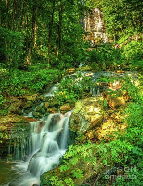 Photograph - Amicalola Falls Georgia by Nick Zelinsky