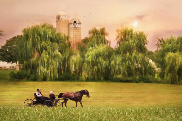 Wall Art - Photograph - Amish Buggy Ride by Lori Deiter