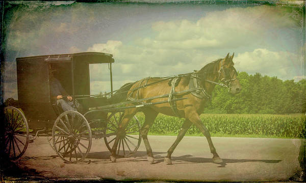 Photograph - Amish Conveyance Color by Jim Cook