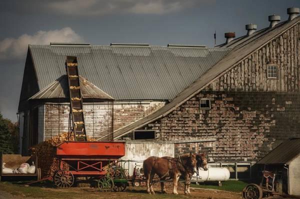 Brian Wilson Wall Art - Photograph - Amish Corn Harvest by Brian Wilson