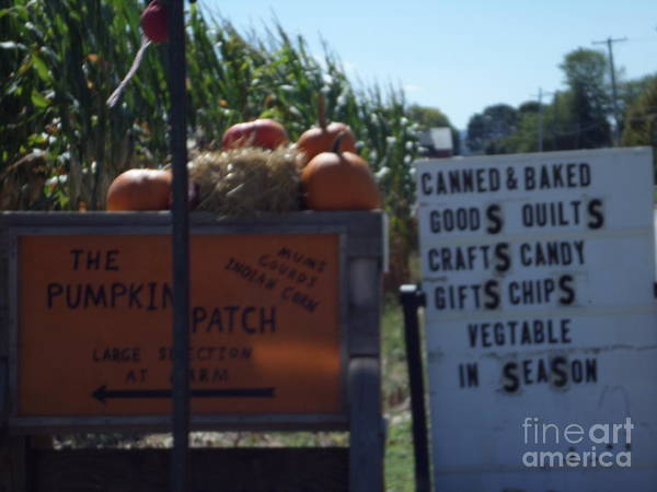 Photograph - Amish Fall Farmstand by Christine Clark