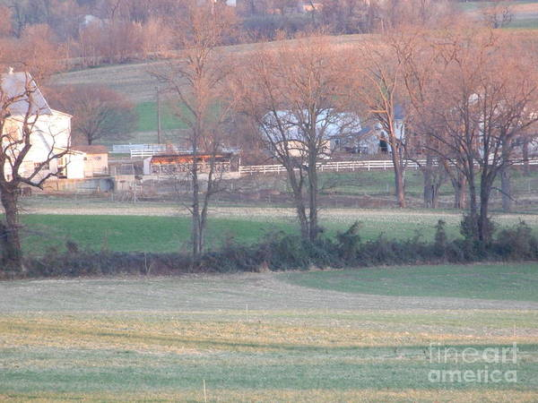 Photograph - Amish Farm Four by Christine Clark
