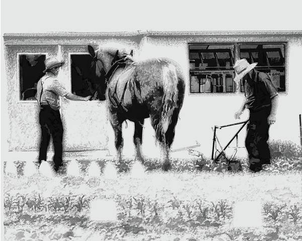 Digital Art - Amish Farming Black And White by John Feiser