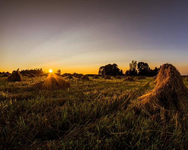 Photograph - Amish Harvest by Chris Bordeleau