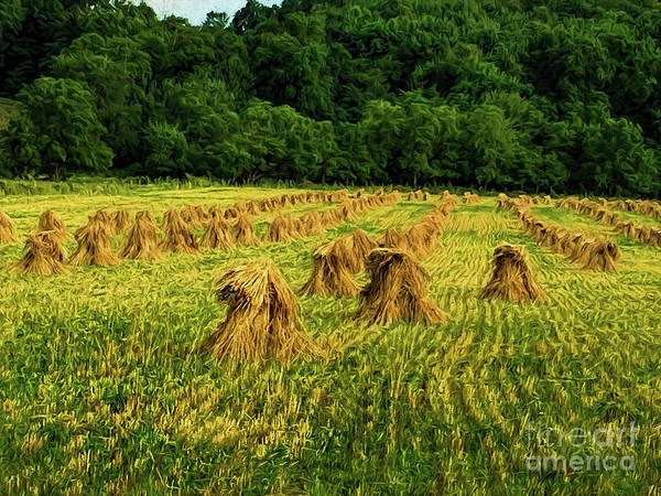 Wall Art - Digital Art - Amish Hay Field by Elijah Knight