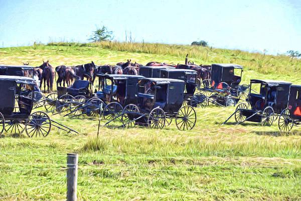 Amish Hillside Art Print